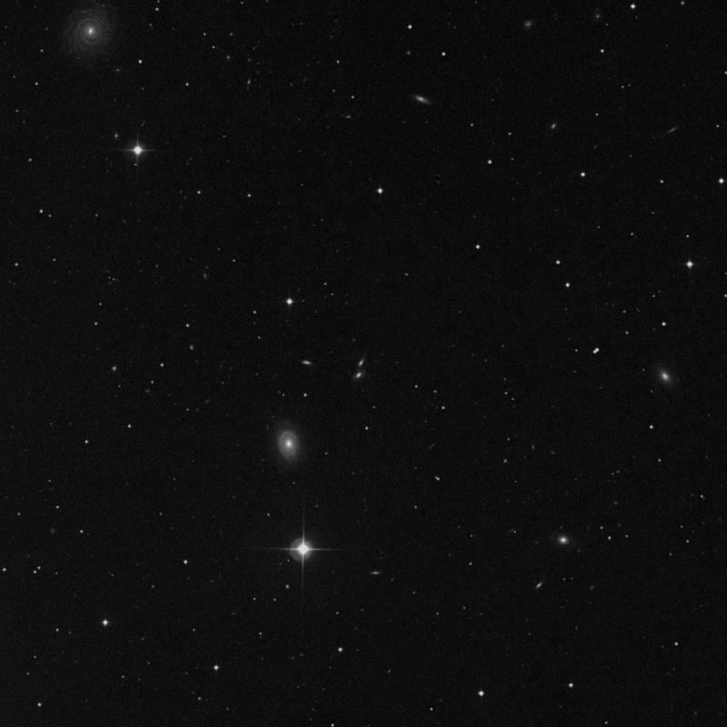 Image of IC 732N - Irregular Galaxy in Leo star