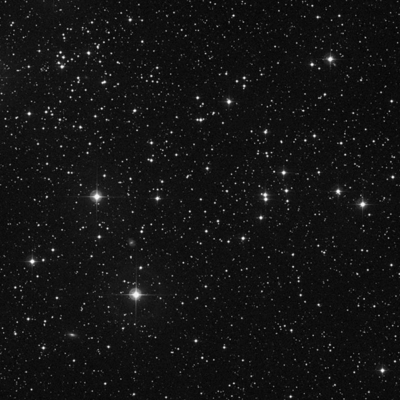 Image of NGC 1750 - Open Cluster in Taurus star