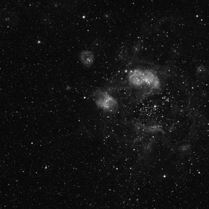 Image of NGC 1769 - Emission Nebula in Dorado star