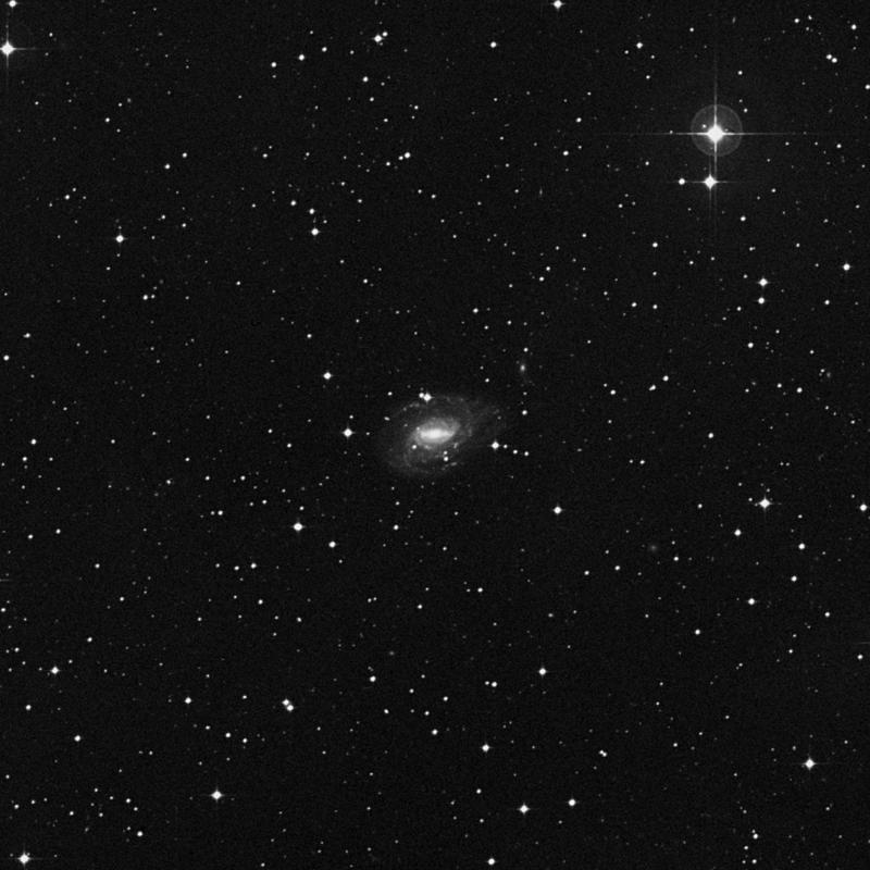 Image of NGC 1784 - Spiral Galaxy star