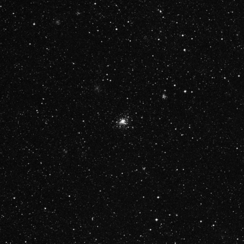 Image of NGC 1818 - Globular Cluster in Dorado star