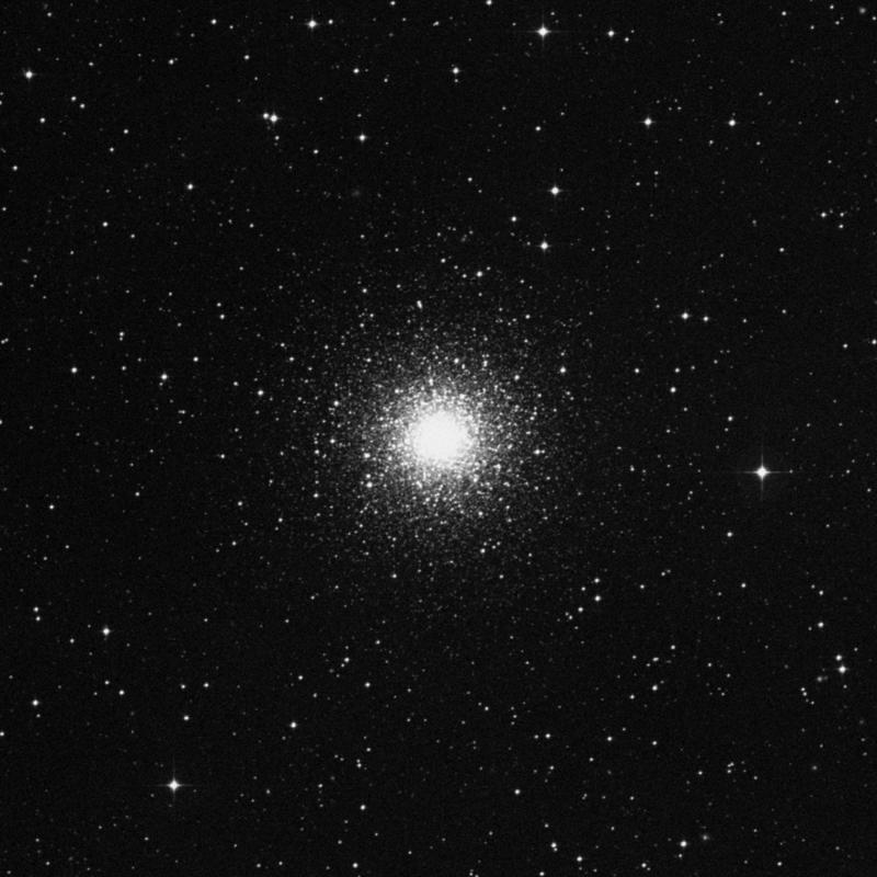 Image of NGC 1851 - Globular Cluster in Columba star