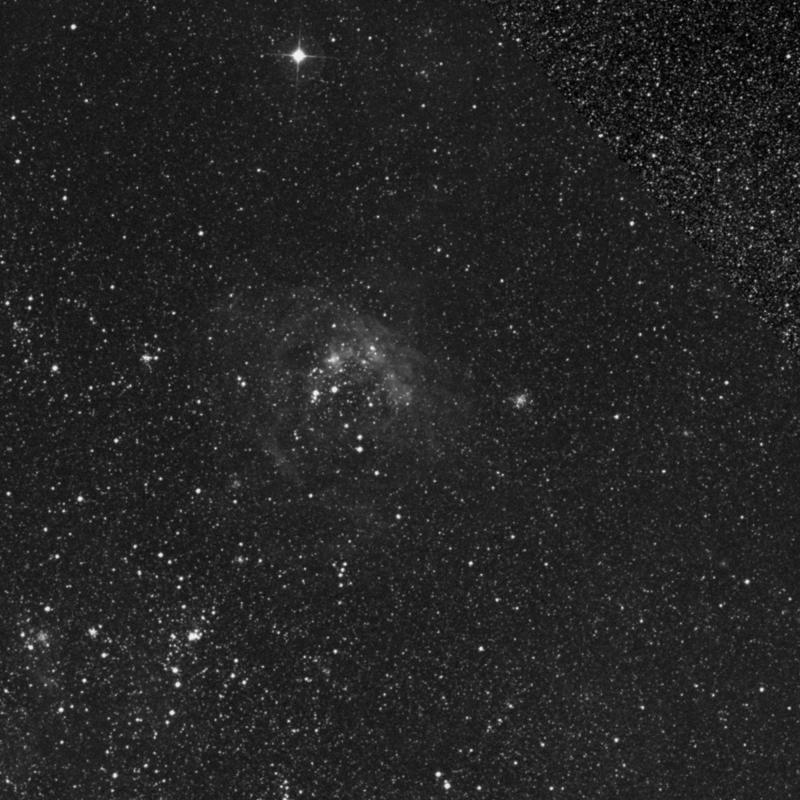 Image of NGC 1962 - Open Cluster in Dorado star