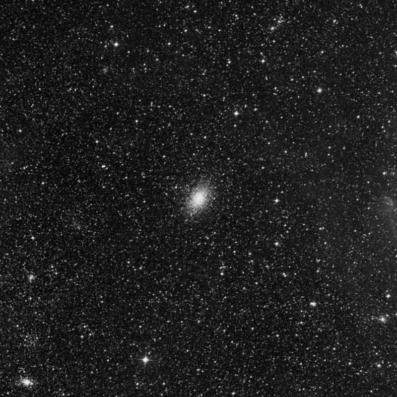 Image of NGC 1978 - Globular Cluster in Dorado star