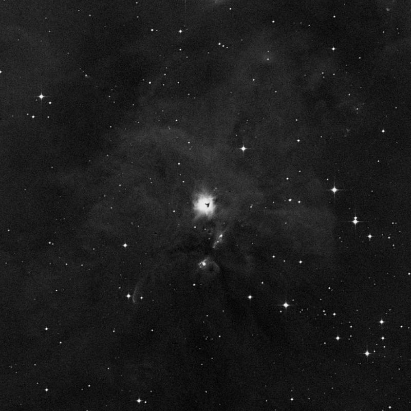 Image of NGC 1999 - Reflection Nebula star
