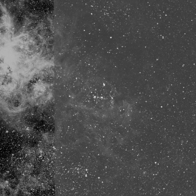 Image of NGC 2044 - Association of Stars in Dorado star