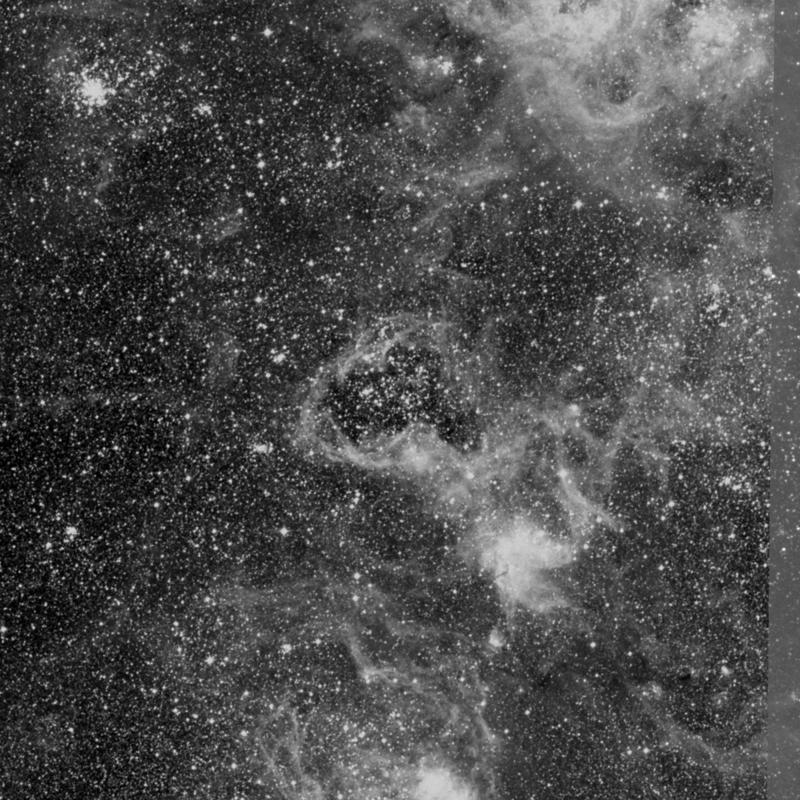 Image of NGC 2081 - Star Cluster + Nebula in Dorado star