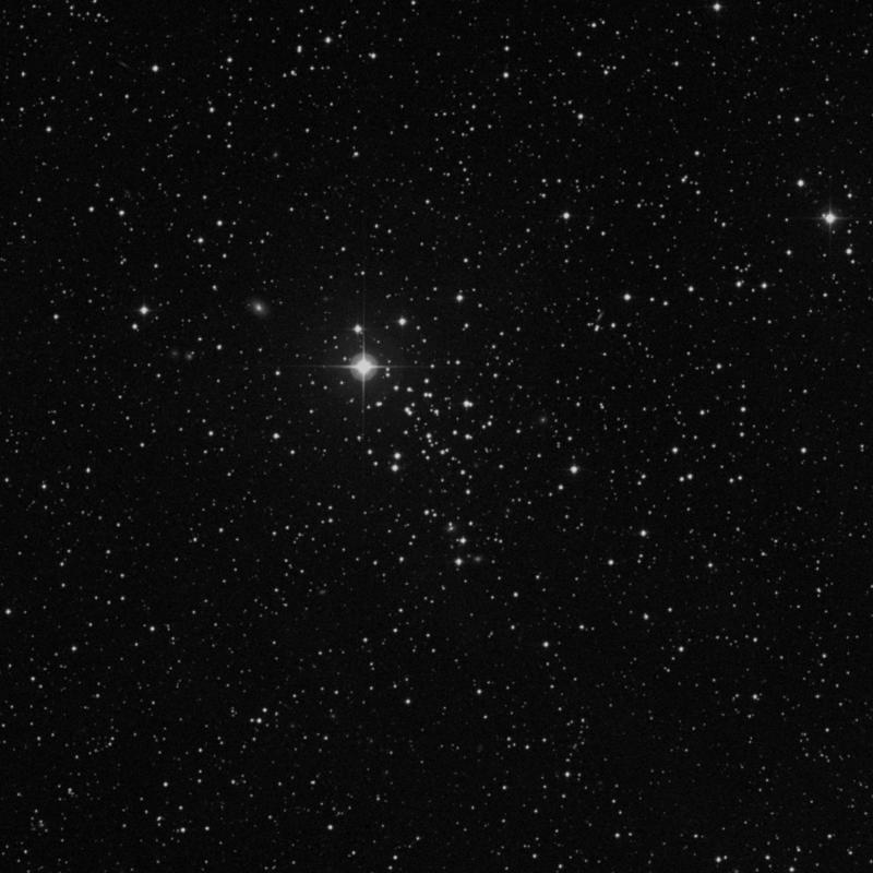 Image of NGC 2126 - Open Cluster in Auriga star