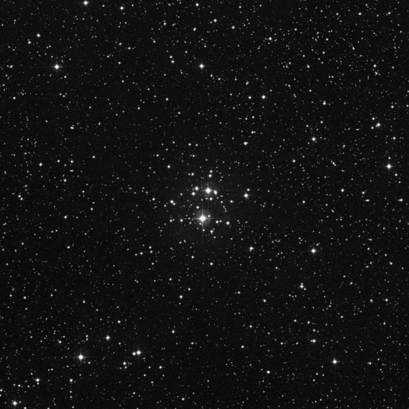 Image of NGC 2129 - Open Cluster star