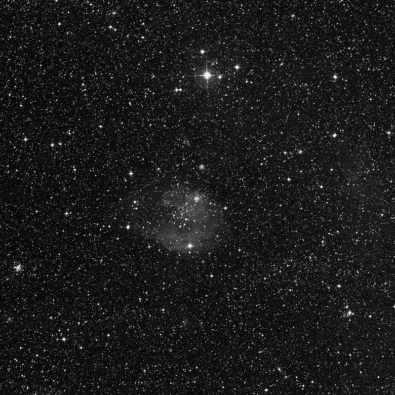 Image of NGC 2147 - Open Cluster in Dorado star