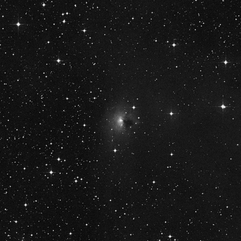 Image of NGC 2149 - Reflection Nebula in Monoceros star