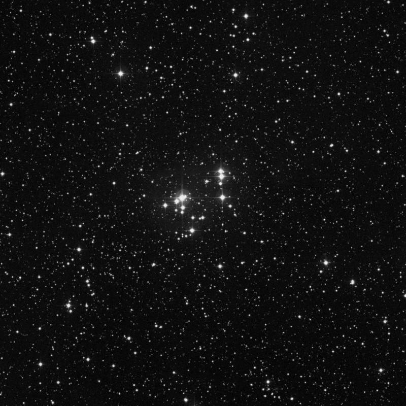 Image of NGC 2169 - Open Cluster star