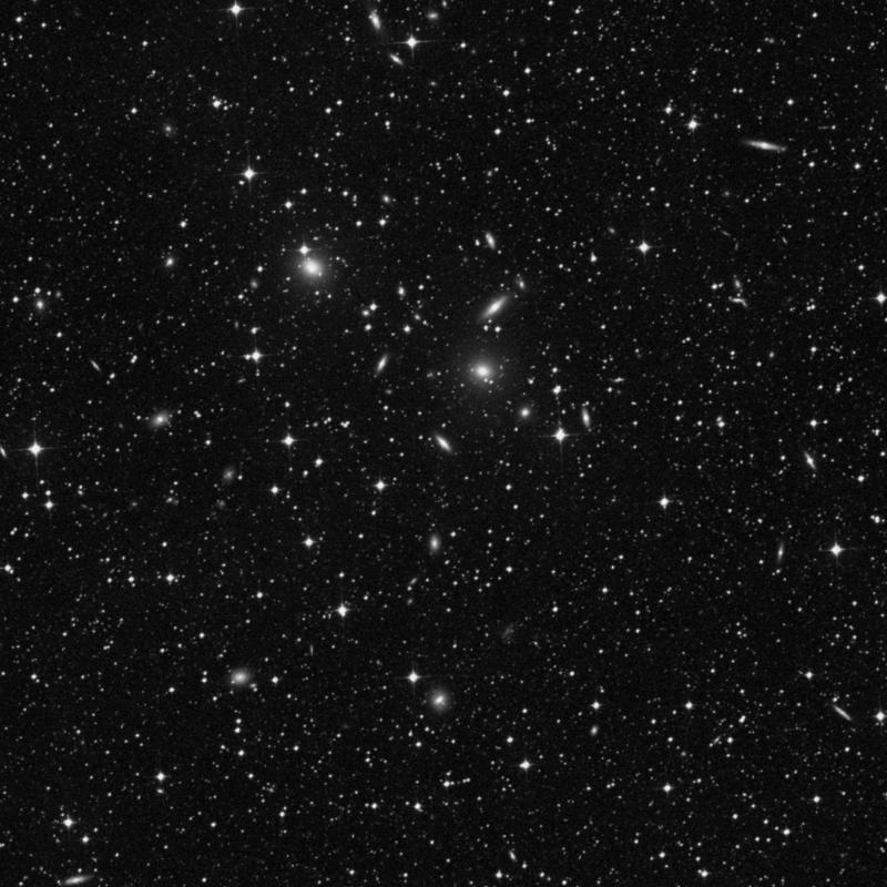 Image of NGC 2233 - Elliptical Galaxy in Dorado star