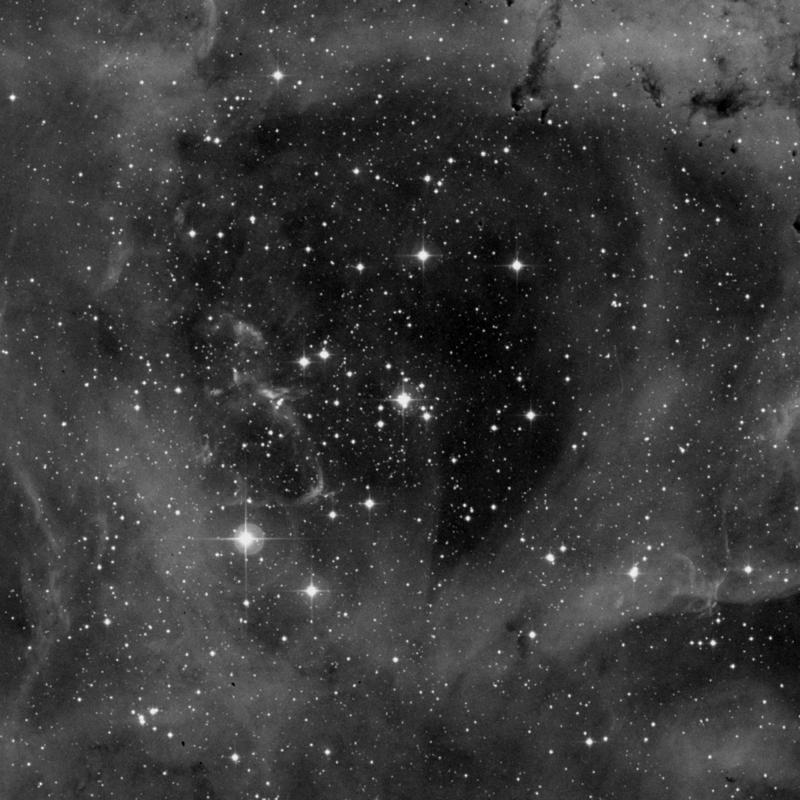Image of NGC 2239 - Star Cluster + Nebula in Monoceros star
