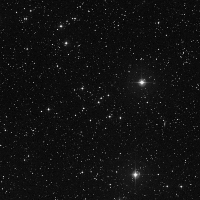 Image of NGC 2240 - Open Cluster star