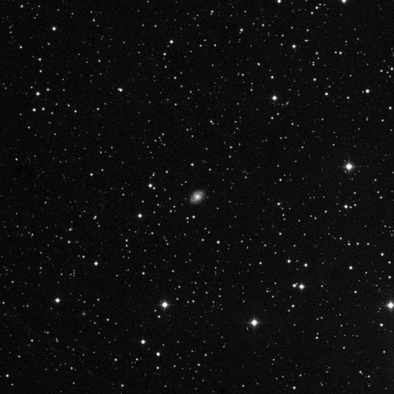 Image of NGC 2253 - Spiral Galaxy star