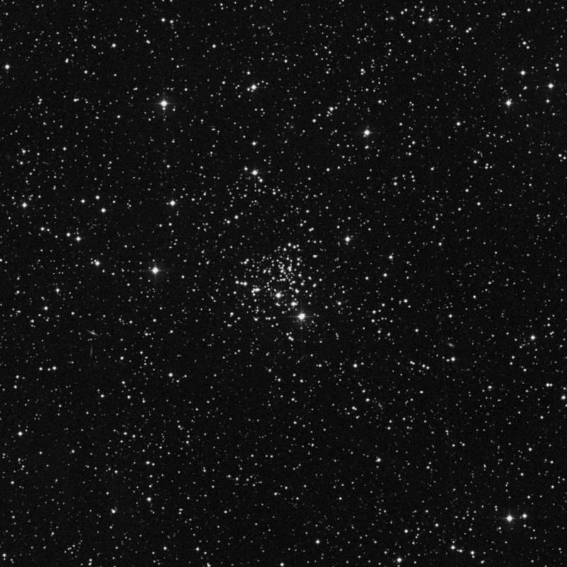 Image of NGC 2266 - Open Cluster star