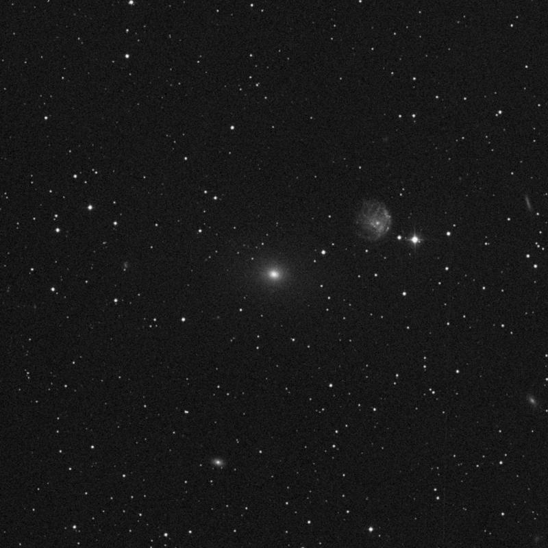 Image of NGC 2300 - Elliptical/Spiral Galaxy star