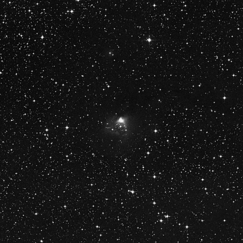 Image of NGC 2316 - Nebula in Monoceros star