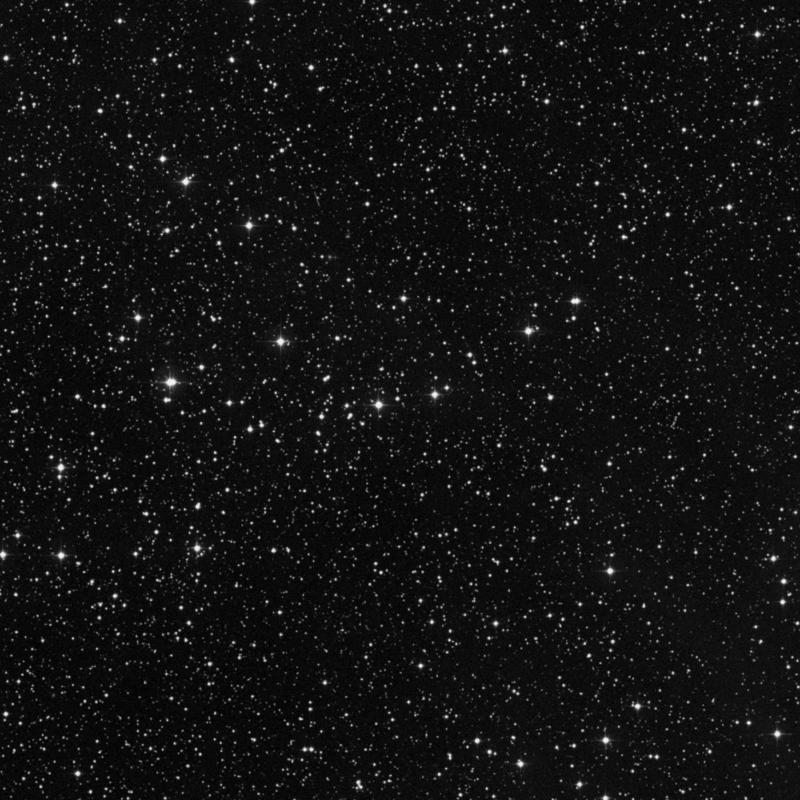 Image of NGC 2319 - Open Cluster in Monoceros star