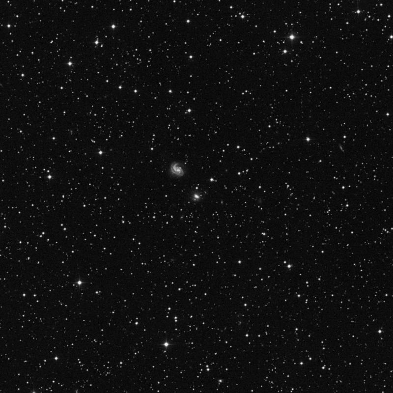 Image of NGC 2341 - Spiral Galaxy star