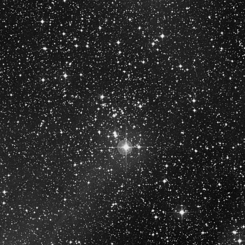 Image of NGC 2353 - Open Cluster in Monoceros star