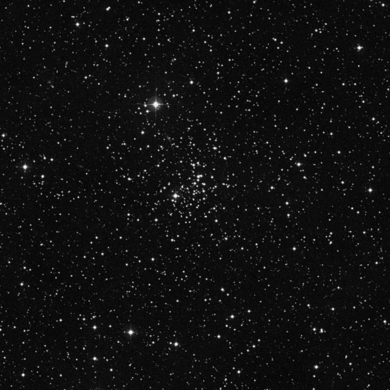 Image of NGC 2355 - Open Cluster in Gemini star
