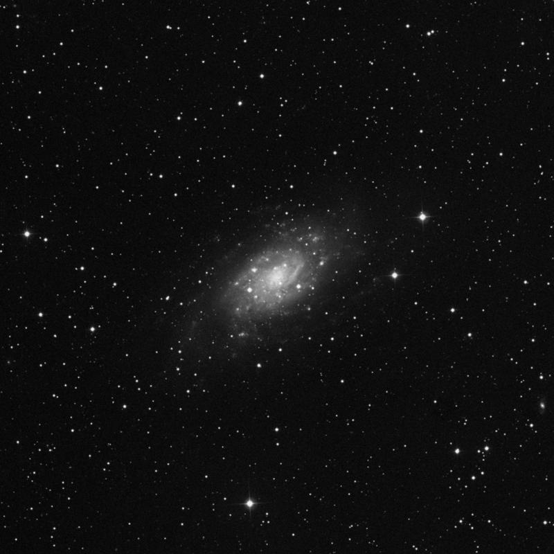 Image of NGC 2403 - Intermediate Spiral Galaxy star