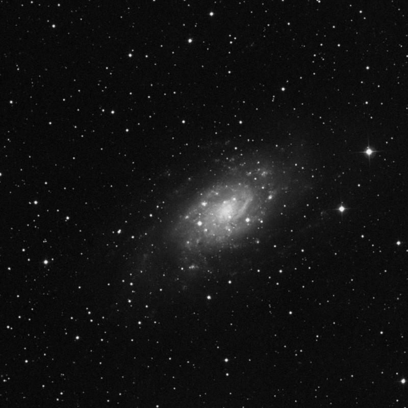 Image of NGC 2404 - HII Ionized region star