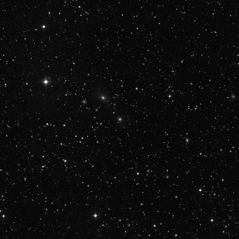 Image of NGC 2406 - Elliptical Galaxy star