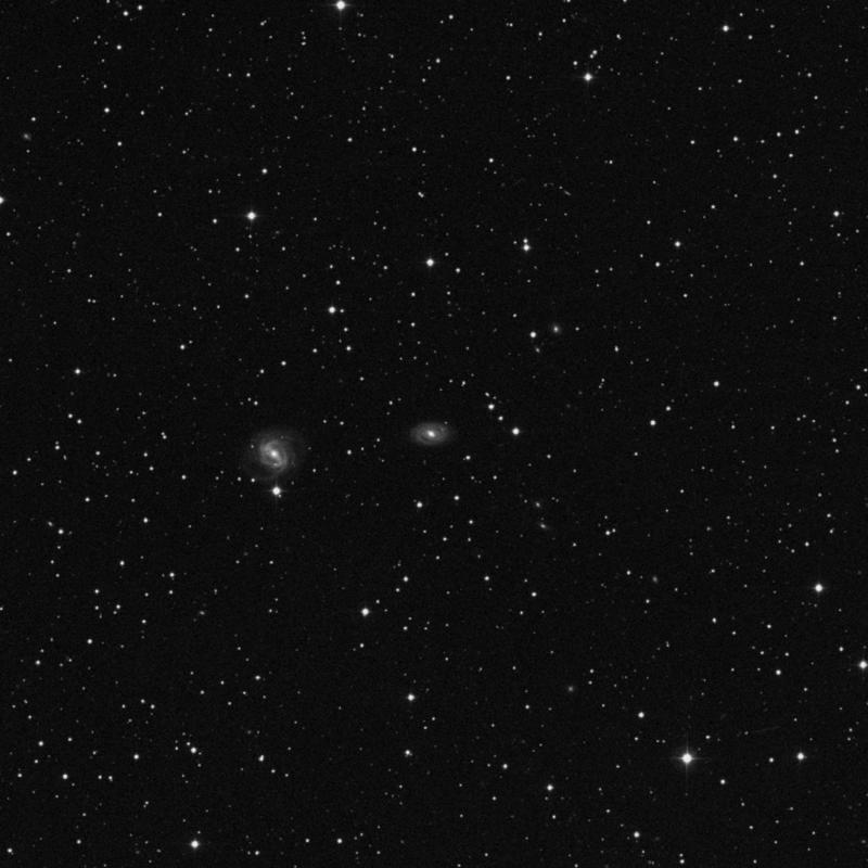 Image of NGC 2486 - Barred Spiral Galaxy in Gemini star