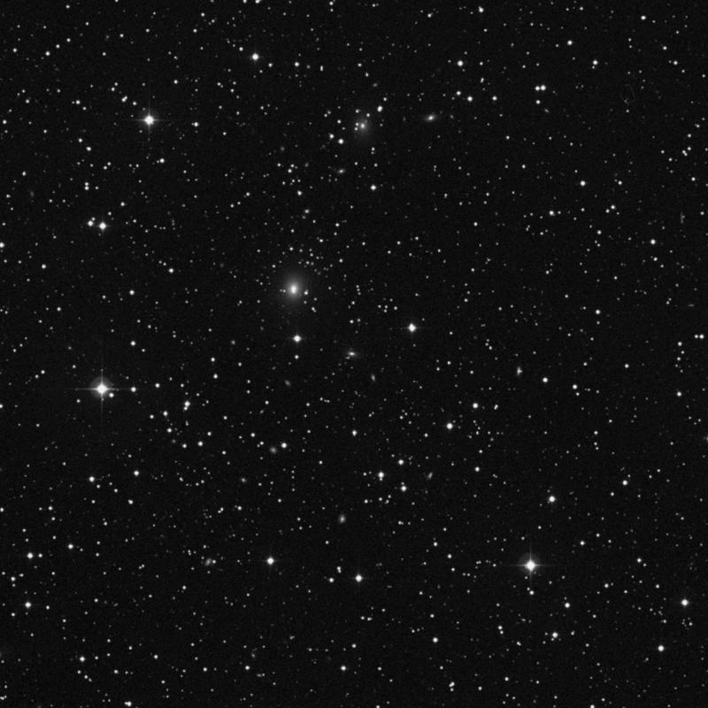 Image of NGC 2491 - Galaxy in Canis Minor star