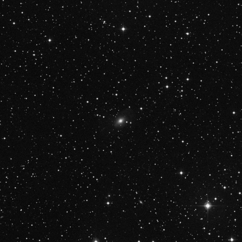 Image of NGC 2508 - Elliptical Galaxy in Cancer star