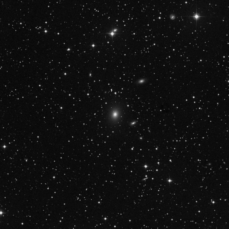 Image of NGC 2513 - Elliptical Galaxy star