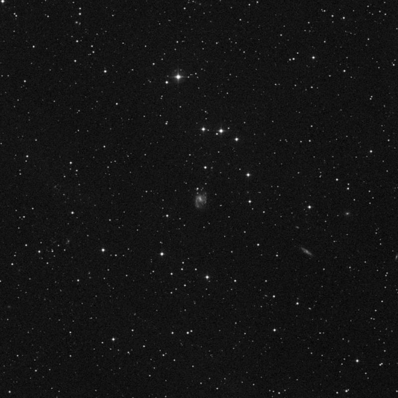 Image of NGC 2530 - Spiral Galaxy in Cancer star
