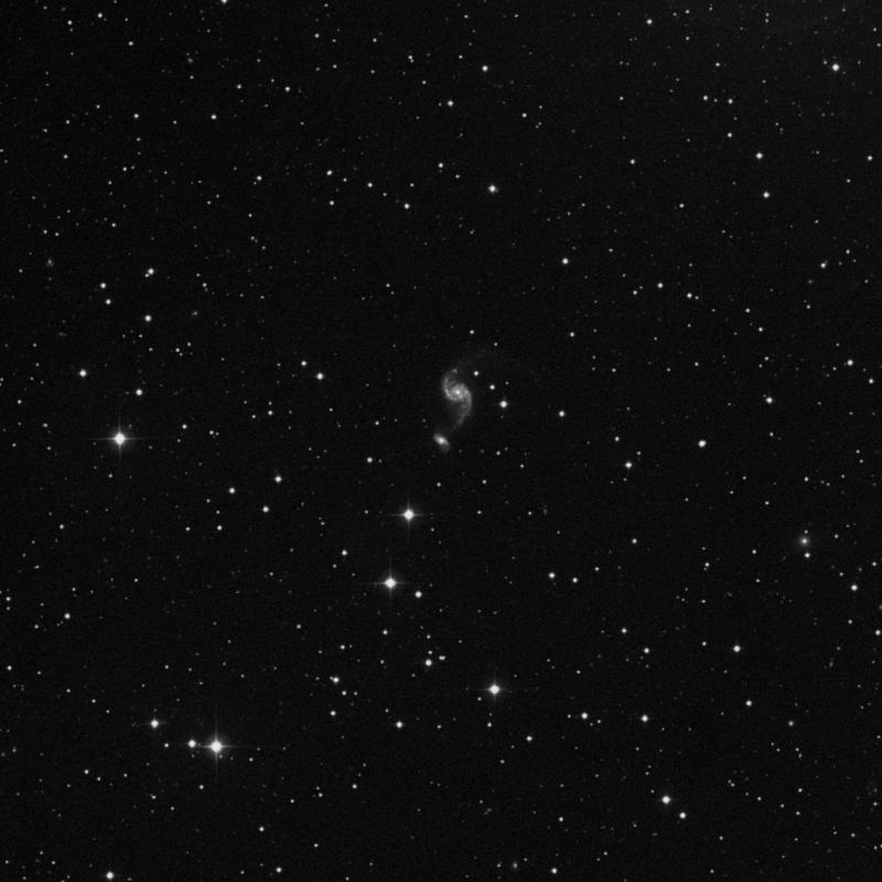 Image of NGC 2536 - Spiral Galaxy in Cancer star