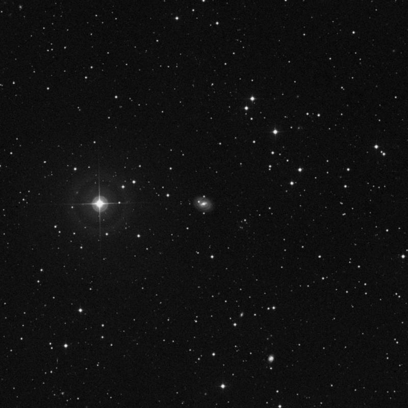Image of NGC 2650 - Spiral Galaxy in Ursa Major star