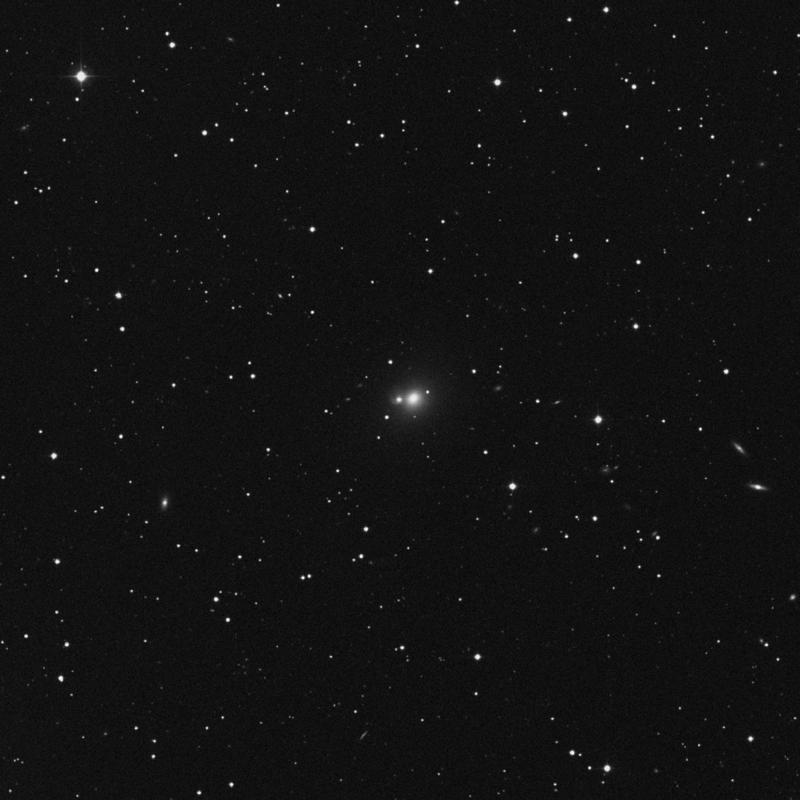 Image of NGC 2673 - Elliptical Galaxy in Cancer star