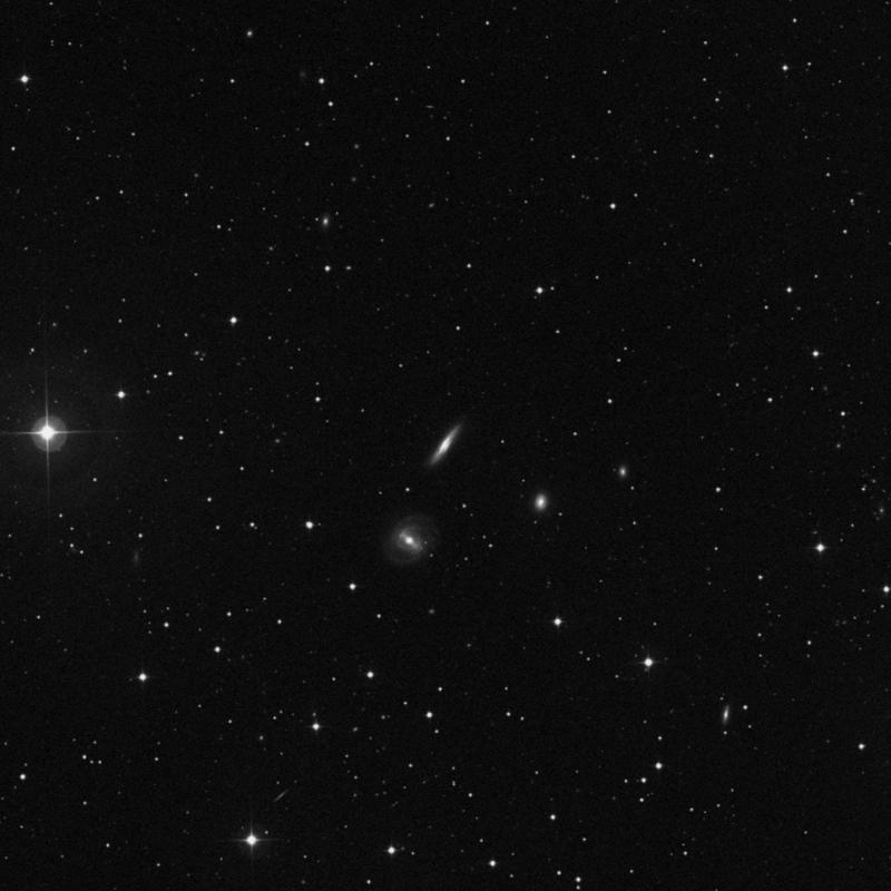 Image of NGC 2769 - Spiral Galaxy in Ursa Major star