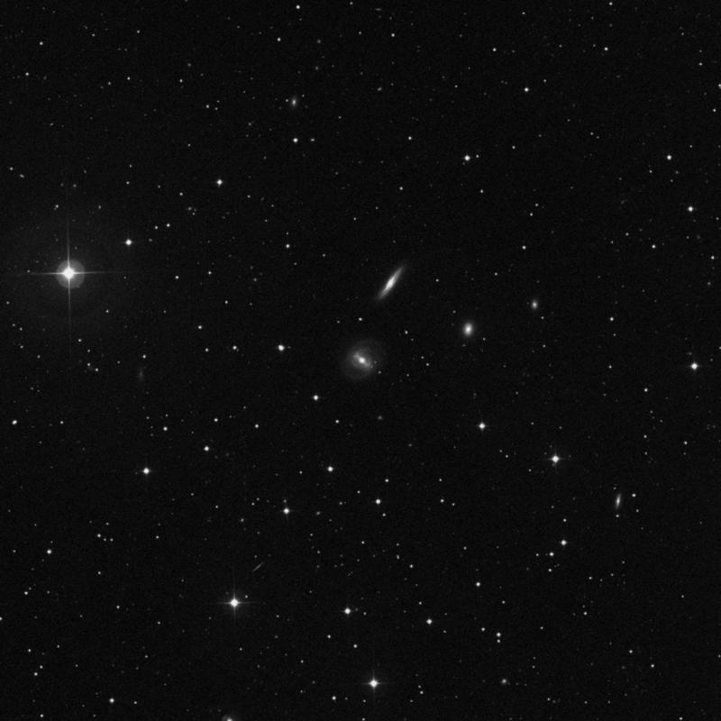 Image of NGC 2771 - Spiral Galaxy in Ursa Major star