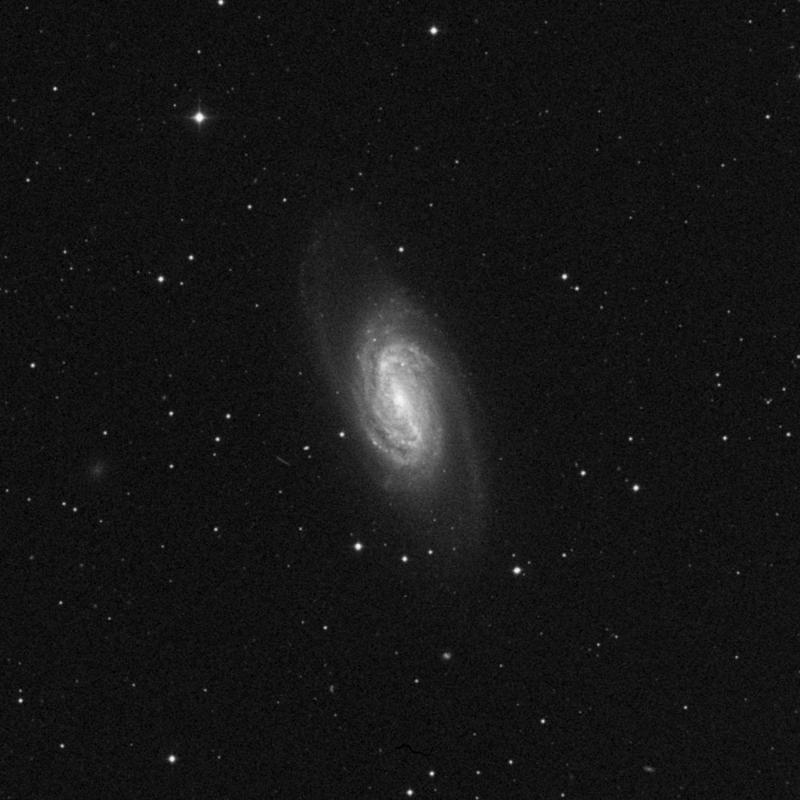 Image of NGC 2903 - Spiral Galaxy in Leo star