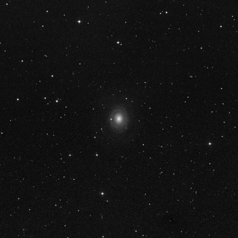Image of NGC 2985 - Spiral Galaxy star