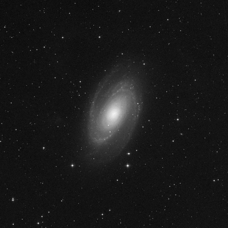 Image of Messier 81 (Bode's Galaxy) - Spiral Galaxy star