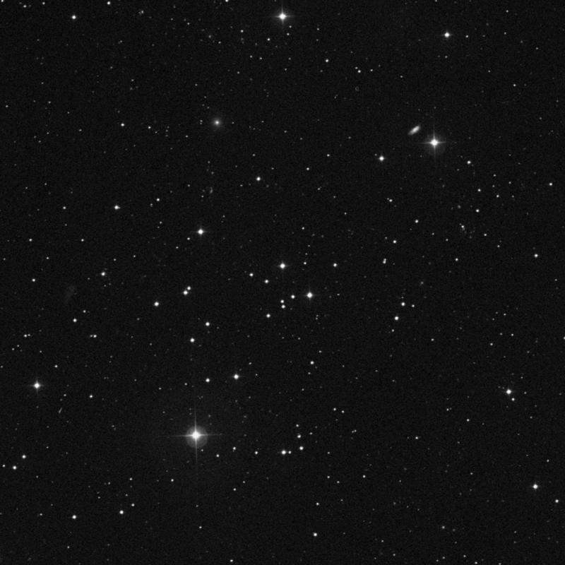 Image of NGC 3231 - Open Cluster in Ursa Major star