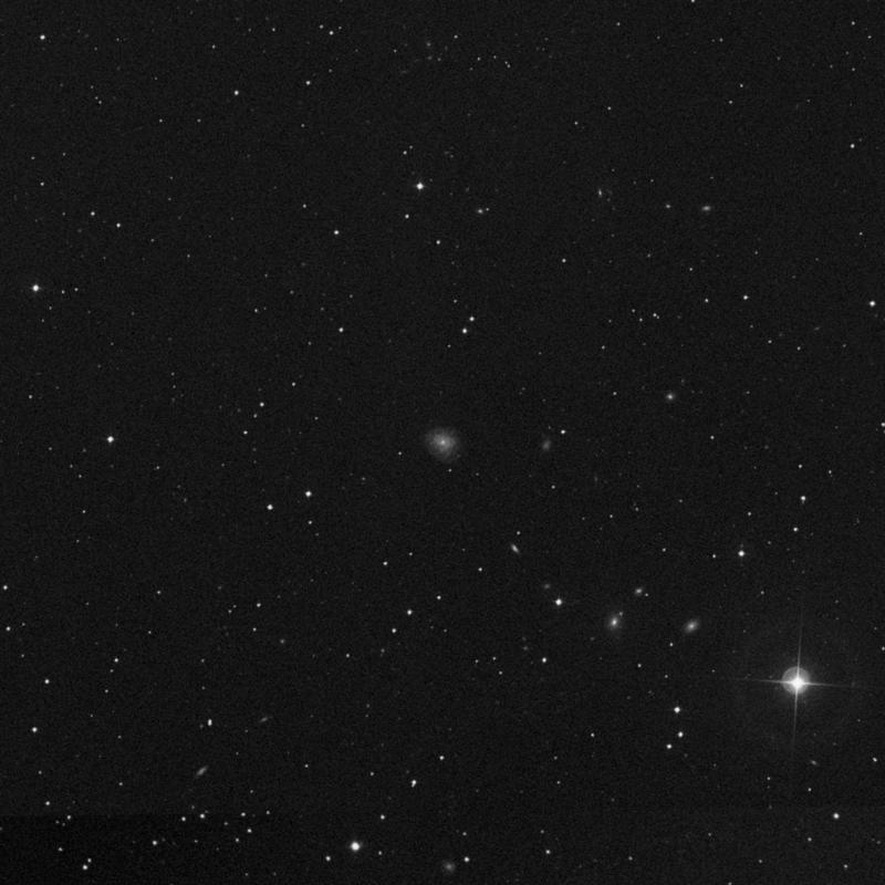 Image of NGC 3364 - Intermediate Spiral Galaxy in Ursa Major star