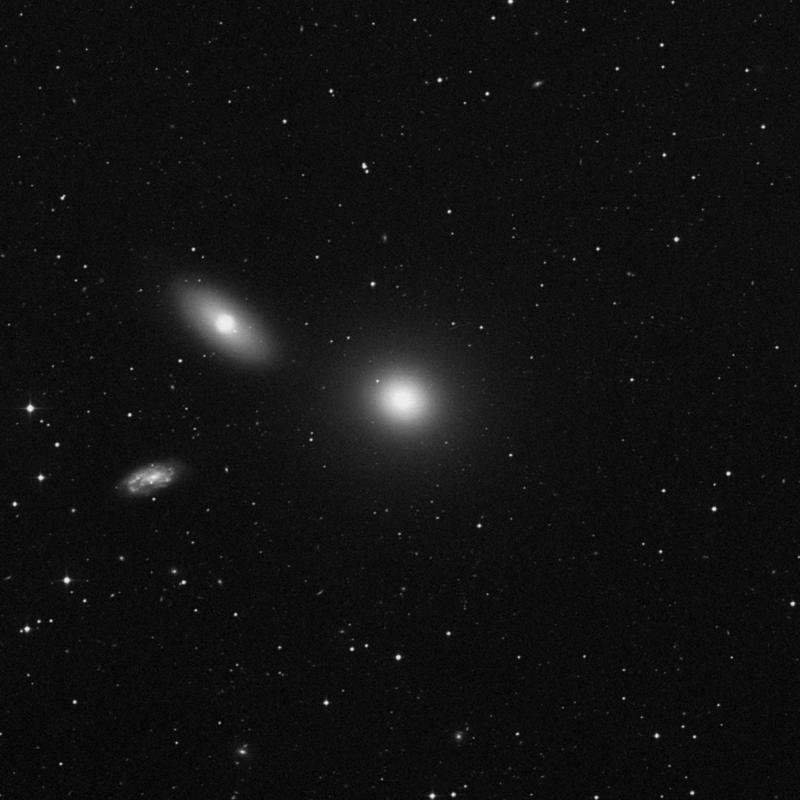 Image of Messier 105 - Elliptical Galaxy in Leo star