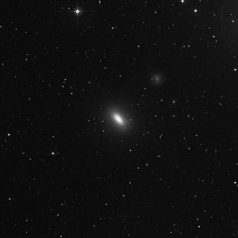 Image of NGC 3377 - Elliptical Galaxy star