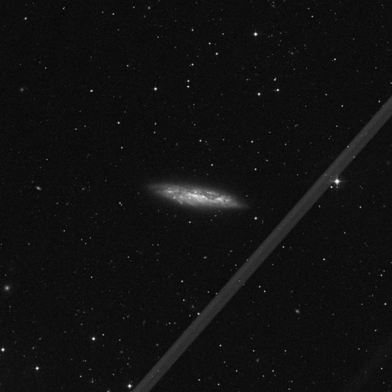 Image of Messier 108 - Spiral Galaxy star