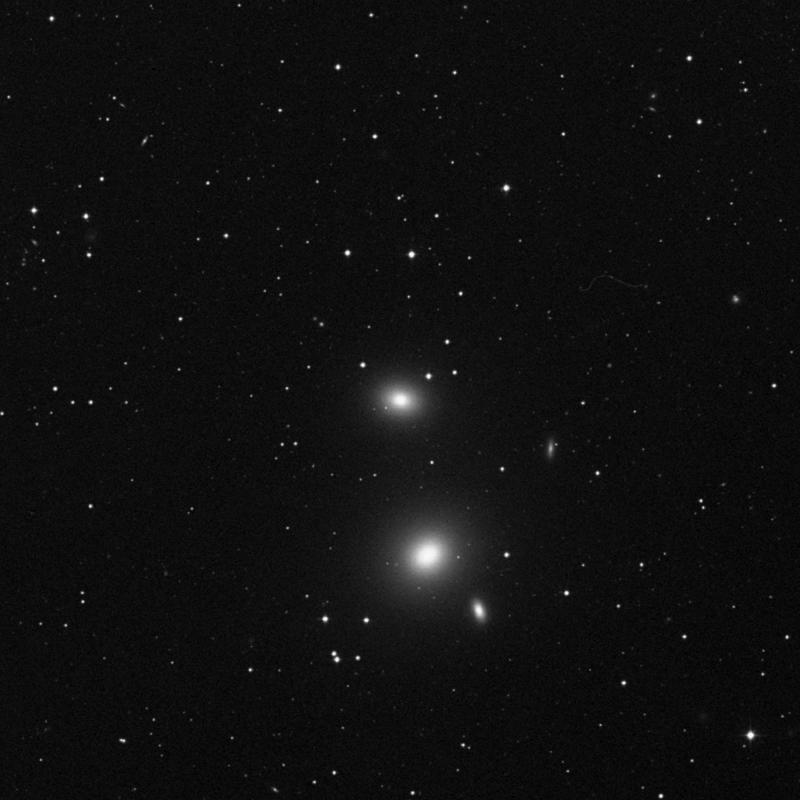 Image of NGC 3608 - Elliptical Galaxy in Leo star