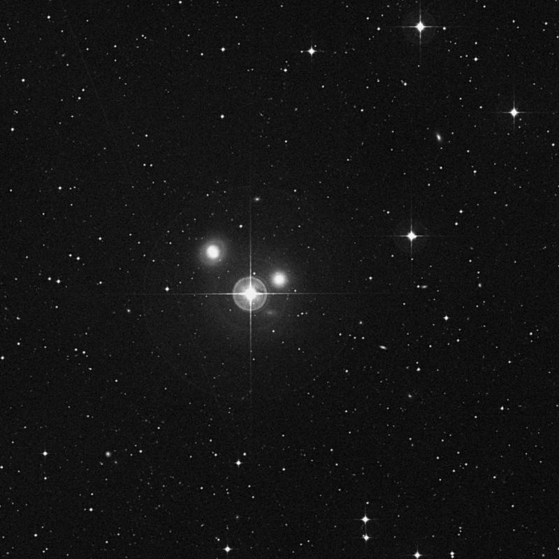 Image of NGC 3636 - Elliptical Galaxy star